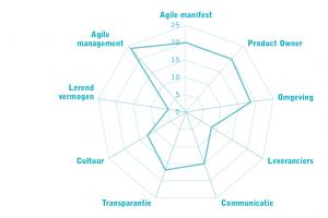 VKA agile assessment